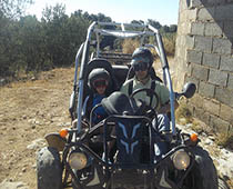 buggys